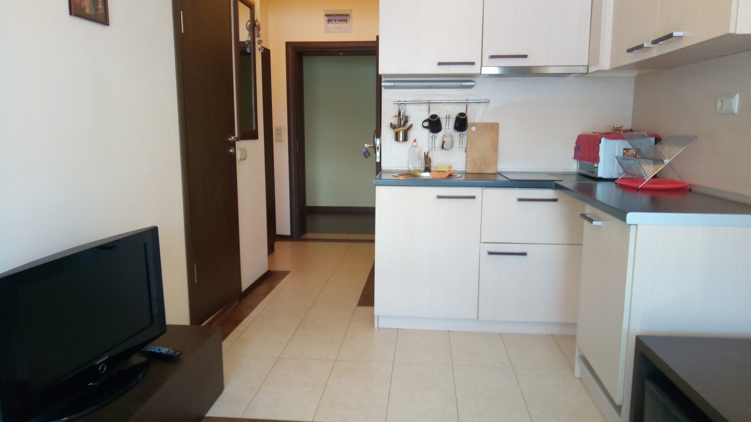 Furnished one-bedroom apartment for rent in Perun Lodge