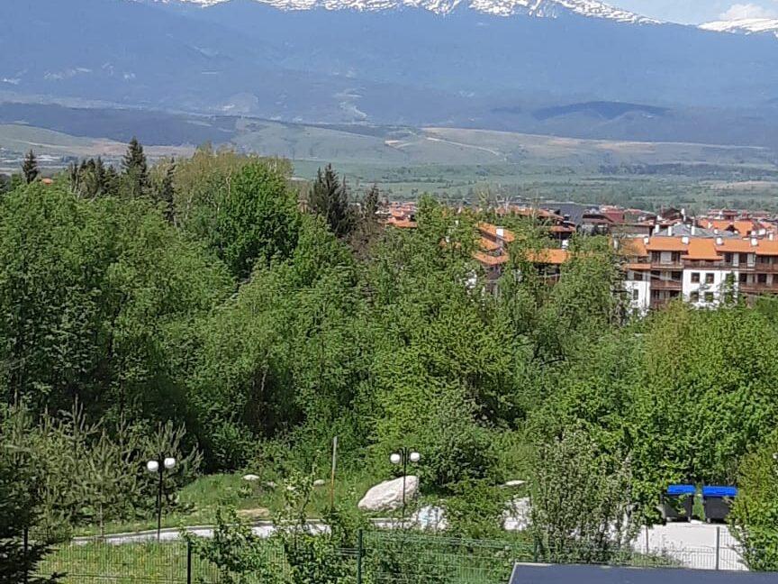 panorama (7)